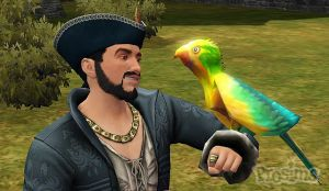 birds-medieval-pirates-and-know_12