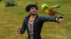 birds-medieval-pirates-and-know_17